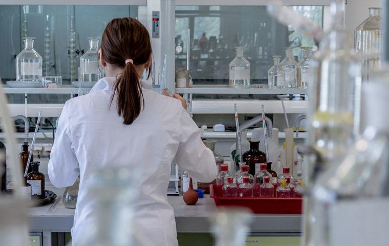 幹細胞コスメと育毛